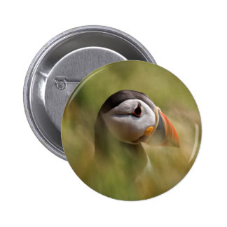 In a Sea of Green Puffin 6 Cm Round Badge