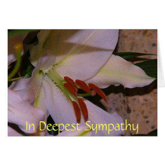 In Deepest Sympathy Greeting Card