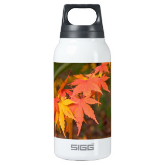 In Fall Colors Multiple Insulated Water Bottle