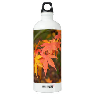 In Fall Colors Multiple SIGG Traveller 1.0L Water Bottle