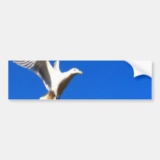 In Flight Bumper Sticker