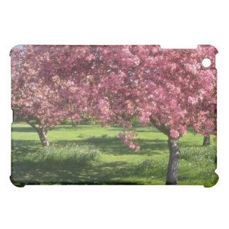 In full bloom, Niagara Falls flowers Case For The iPad Mini