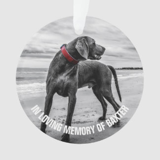 In Loving Memory | Keepsake Photo Memorial Ornament