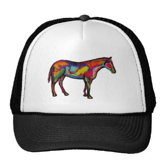 IN MANY COLORS CAP