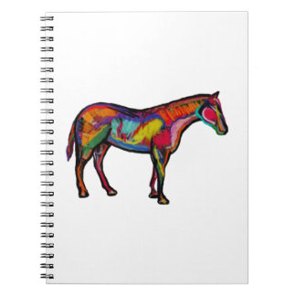 IN MANY COLORS NOTEBOOKS