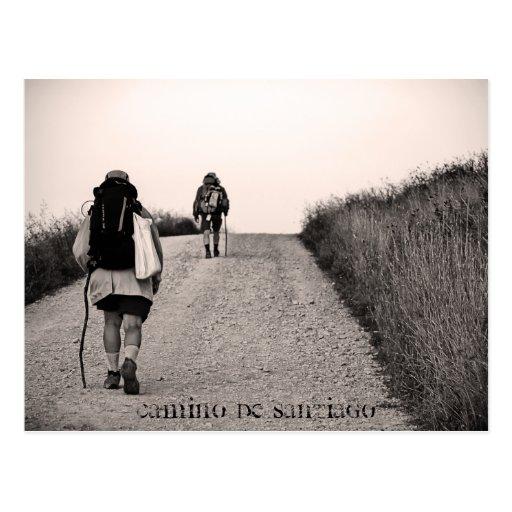In search, Camino de Santiago Postcards