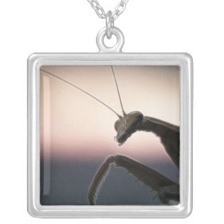 In Silhouette - Praying Mantis Silver Plated Necklace