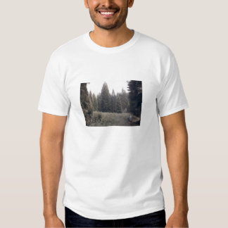 In the Forest T Shirt