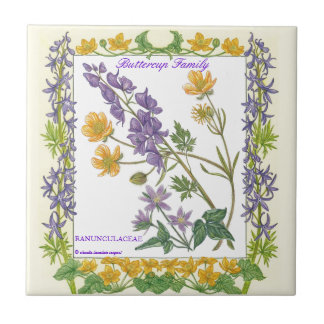In the Garden ~ Buttercup Family  Tile
