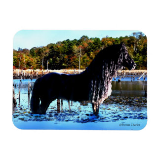 """In The Marsh"" Horse Photo Magnet"