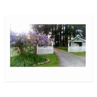 In the Neighborhood - Wisteria 2 Postcard