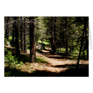 In the Pines- Winter Park Colorado Note Card