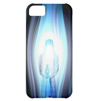 In the Shadow, In the Light iPhone 5C Case