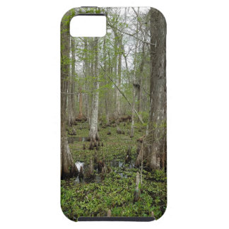 In the Swamp iPhone 5 Cases