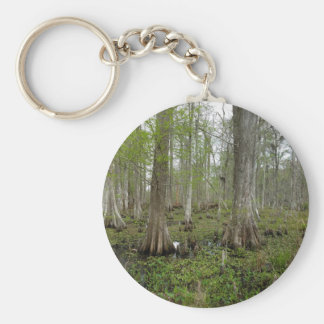 In the Swamp Key Ring