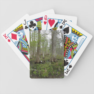 In the Swamp Poker Deck