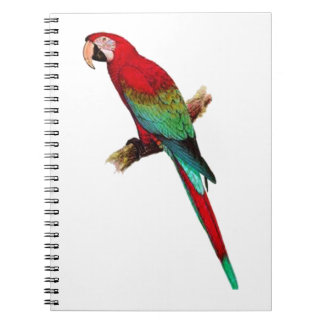 In The Tiki Room Spiral Notebook