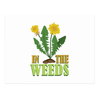 In The Weeds Postcard