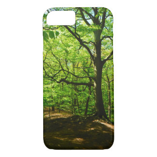 In the woods Phone Case