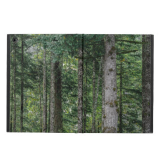 In the Woods Powis iPad Air 2 Case