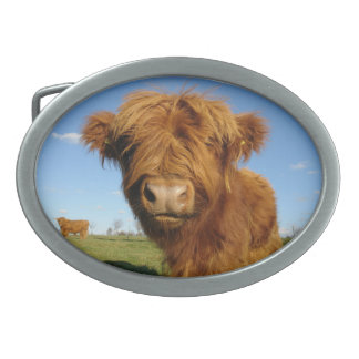 In Your Face Cow Belt Buckle