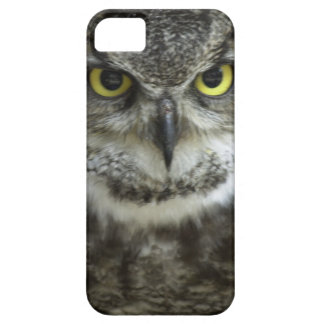 In Your Face Owl Barely There iPhone 5 Case