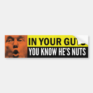 In Your Guts You Know He's Nuts Bumper Sticker