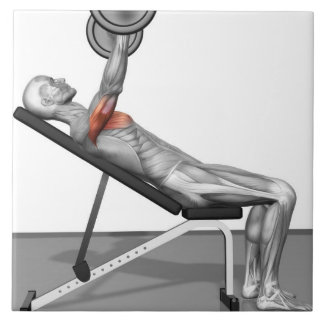 Incline Bench Press 3 Tile