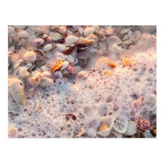 Incoming Surf And Seashells On Sanibel Island Postcard