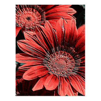 incomparably beautiful blooms, red postcards