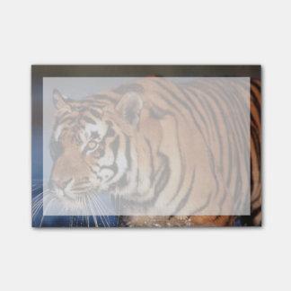 India, Bengal Tiger (Panthera Tigris) 2 Post-it Notes