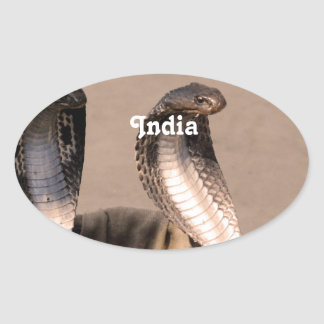 India Cobra Oval Sticker