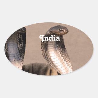 India Cobra Oval Sticker