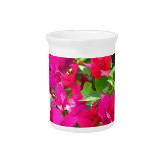 India travel flower bougainvillea floral emblem pitchers