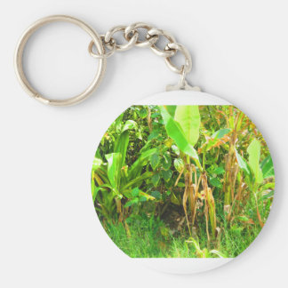 India Travels Infant Banana trees saplings Green Basic Round Button Key Ring