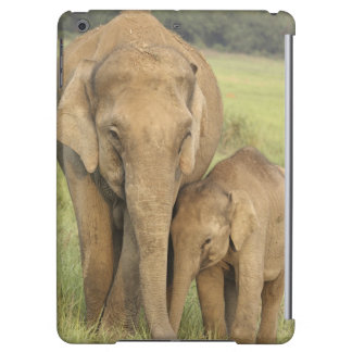 Indian / Asian Elephant and young one,Corbett