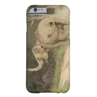 Indian / Asian Elephant communicating,Corbett Barely There iPhone 6 Case