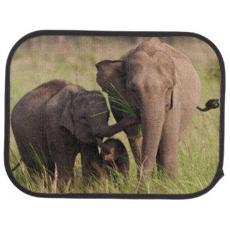 Indian Asian Elephant family in the savannah Floor Mat