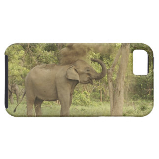 Indian / Asian Elephant taking dust bath,Corbett Case For The iPhone 5