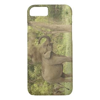Indian / Asian Elephant taking dust bath,Corbett iPhone 7 Case