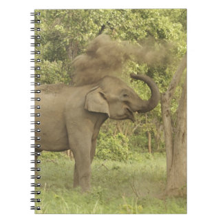 Indian / Asian Elephant taking dust bath,Corbett Spiral Note Books
