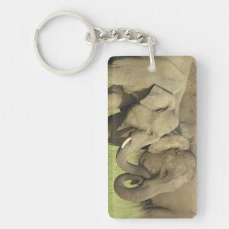 Indian / Asian Elephants sharing a Double-Sided Rectangular Acrylic Key Ring