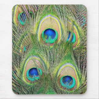 Indian Blue Peacock Feathers Mouse Pad