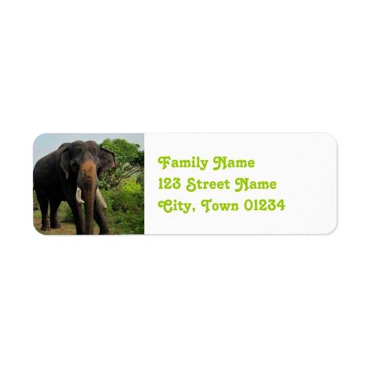 Indian Elephant Return Address Label
