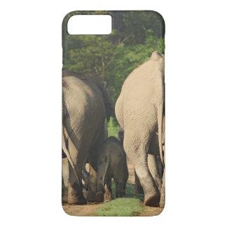 Indian Elephants on the jungle track,Corbett iPhone 7 Plus Case