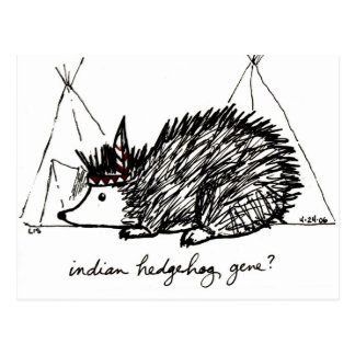 Indian Hedgehog Gene postcard