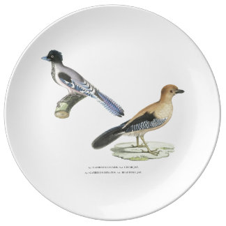 Indian Jays Plate