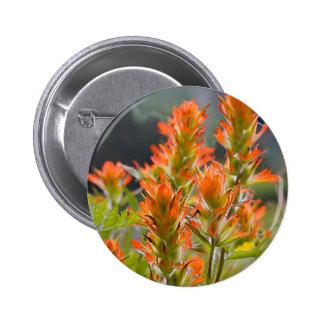 Indian Paintbrush 6 Cm Round Badge