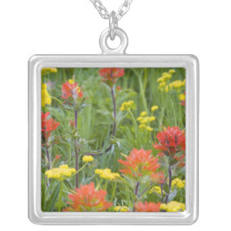 Indian paintbrush and biscuitroot wildflowers square pendant necklace