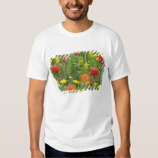 Indian paintbrush and biscuitroot wildflowers tee shirt